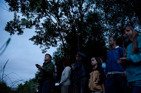 20090604-netopirKdFJM-2358.jpg