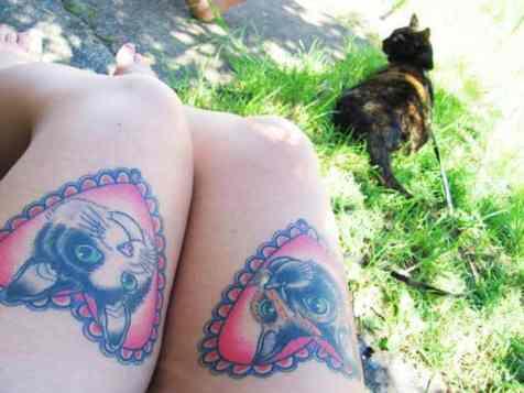 Kedi aşkı