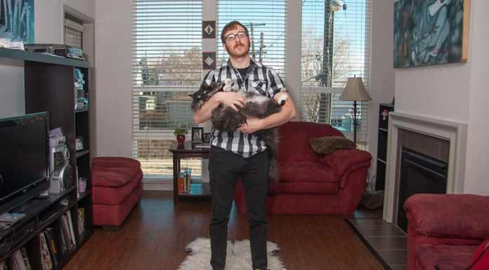 men-and-cats-photography-david-williams-10