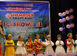 SHEMROCK Smartkids Play School