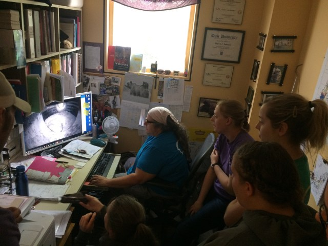 7 keepers cram into office to watch a video
