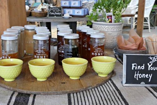 Taste of Honey Keeping Backyard Bees