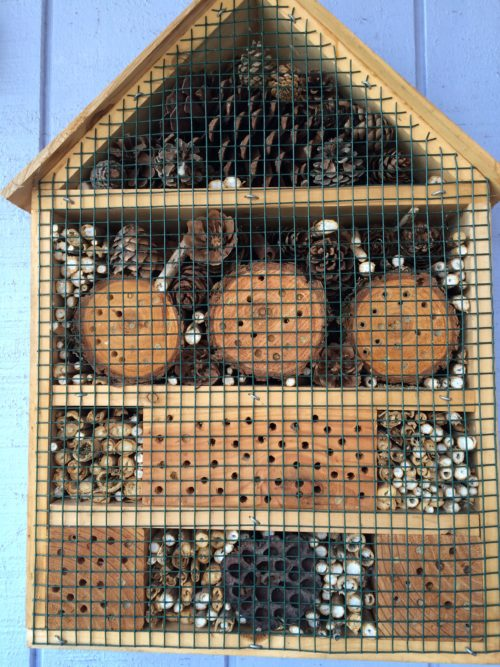 A ready to move in mason bee house