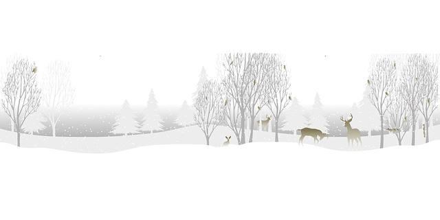 Animals In Winter At The Perkiomen Valley Library Schwenksville