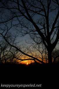 Sunset (16 of 20)