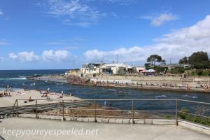 Clovelly Beach and Gordon's Bay (3 of 29)
