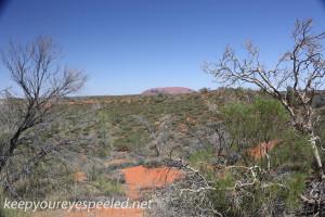 Uluru Desert Gardens hike -25