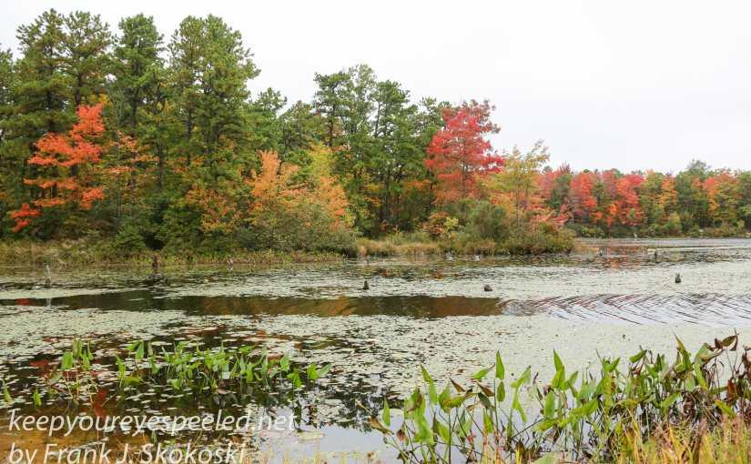 A Farewell Fall Hike Close To Home.