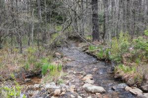 Rails to trails -39