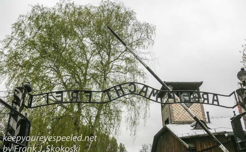 Poland Day Twelve: Auschwitz and Berkenau