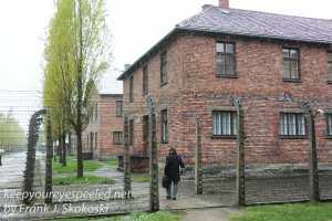 Auschwitz exhibits gas chambers -25