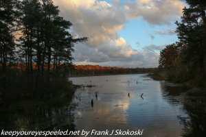 cloud reflection on Lake Irene