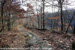 road along stip mine