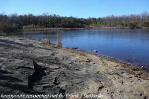 shore of Grape Run reservoir