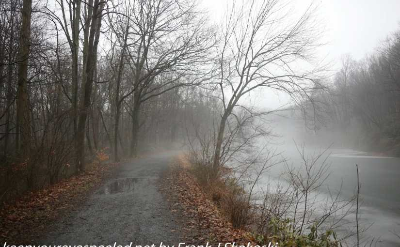 Fog And High Water  On  The Lehigh Canal In Weissport