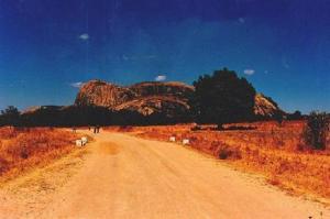 dorheid(Zimbabwe)