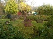 Τα ελαφάκια κάθονται αμέριμνα στην αυλή