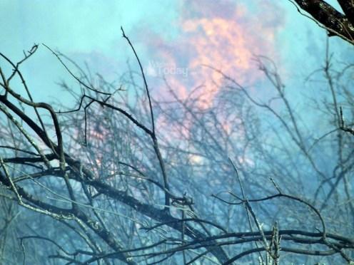 Πυρκαγιά στον Καραβάδο