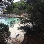 Βόλτα σε απόμερες παραλίες
