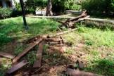 Καταστροφές στον κήπο του Νάπιερ