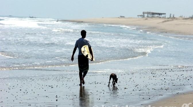 美しい海とシーフードを満喫! ペルー北部の穴場リゾート、ソリートス その1