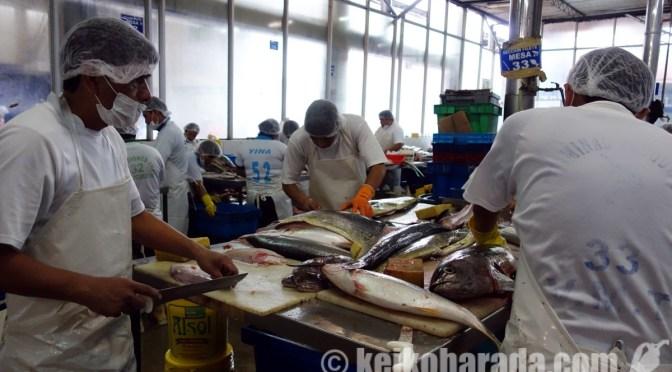 VMT魚介卸売市場