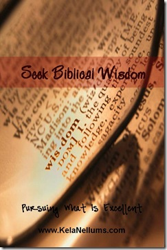 seek biblical wisdom promotion pic
