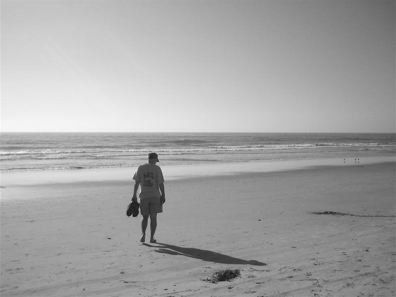 """<alt img=""""Man on a Beach""""/>"""