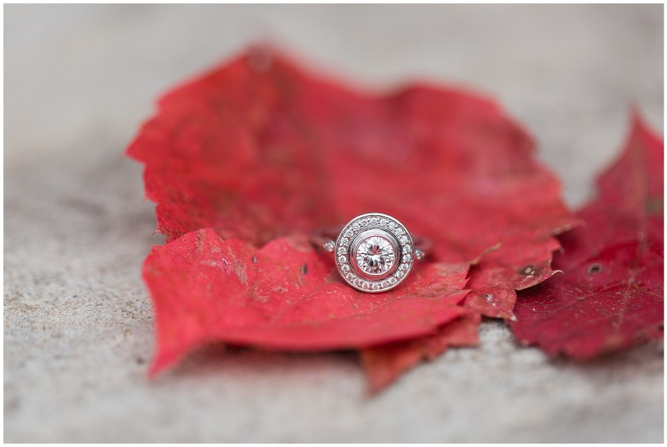 engagement ring on fall leaves