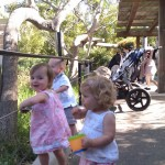 Sierra, Camille, Jett & Tripp at the SB Zoo