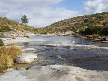 Stream in the Sierra de Gredos