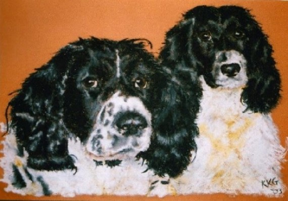 English Springer Spaniels - pet portrait - Kelly Goss