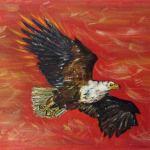 Freedom to soar - eagle - acrylics on canvas - Kelly Goss