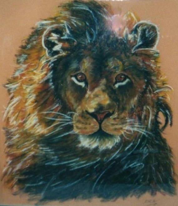 Lion - oil pastels - Kelly Goss