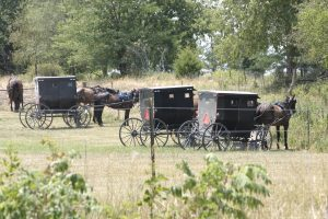 On buggies and choosing to slow down