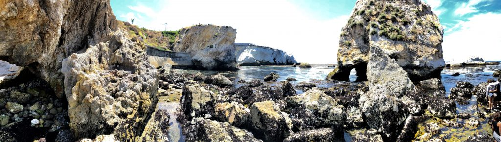 Tide Pools in Pismo Beach. Best place to go. California Adventures. Kelly Luvs Blog