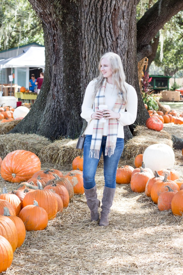 what to do in orlando in the fall