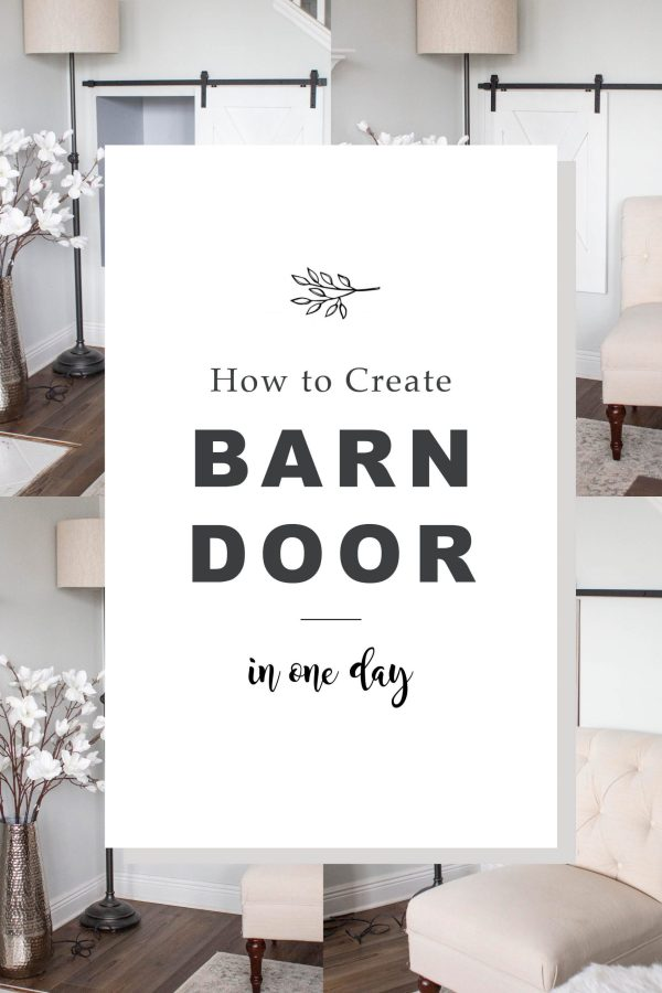 mini barn door
