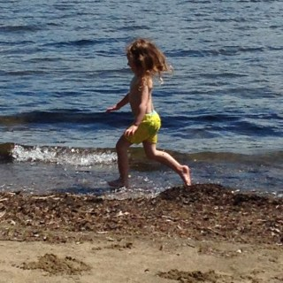Rayleigh running along the shore on Lake Champlain.