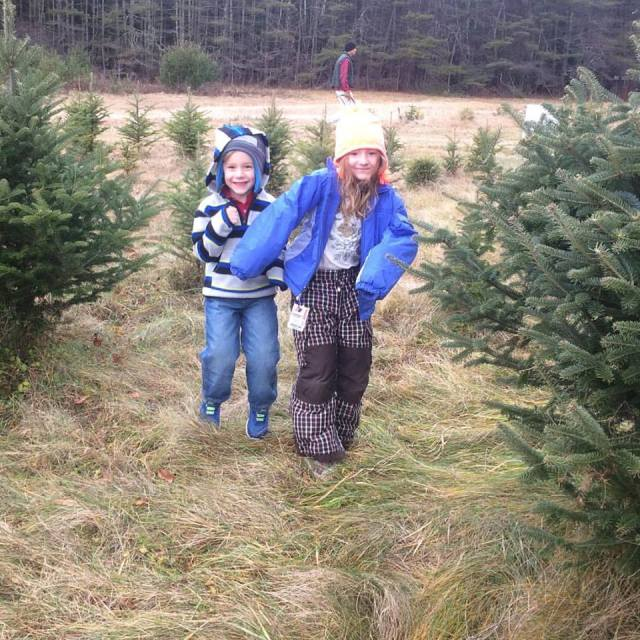 big-kids-tree-shopping-2016