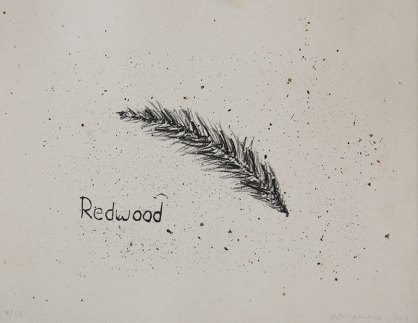 """Redwood, Tree Accessories - 8x10"""" Lithograph, 2013"""