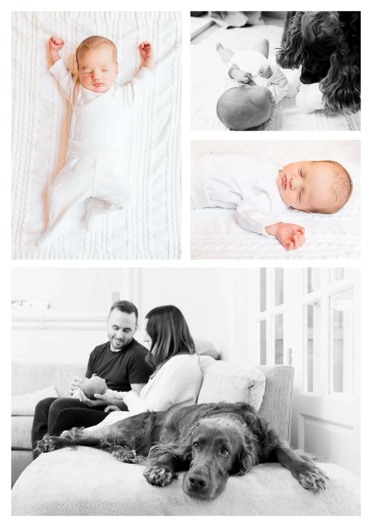 Brighton lifestyle newborn photographer in Hove (1)