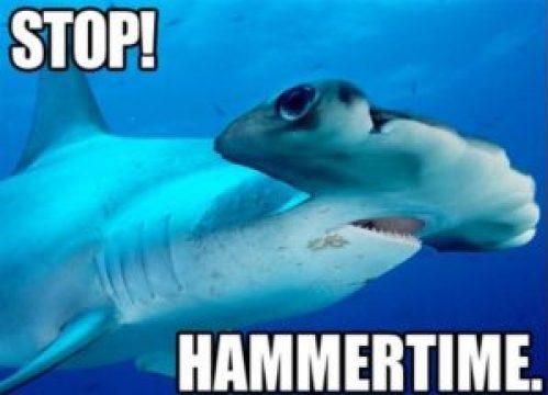 funny hammer fish joke