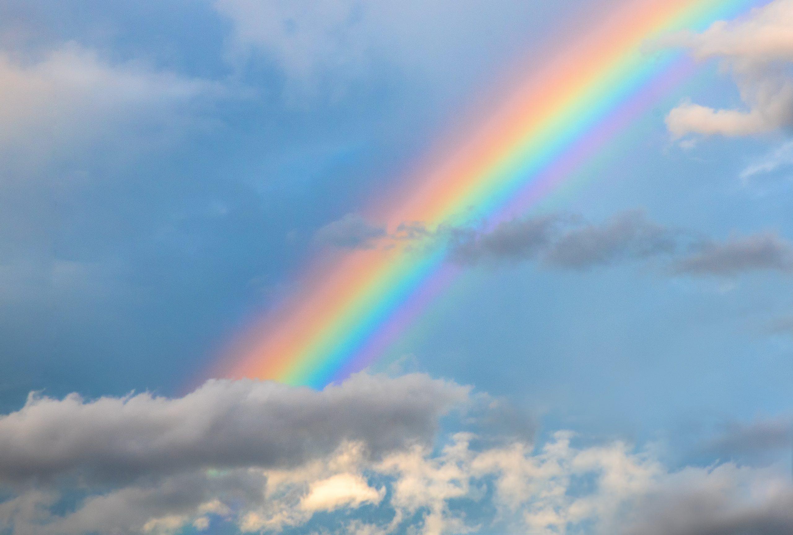 Dal rosso, all'indaco e al viola: tutti i colori dell'arcobaleno