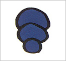 Oval Gonad Radiation Protection Shield