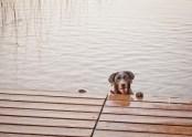 Jada @ the lake