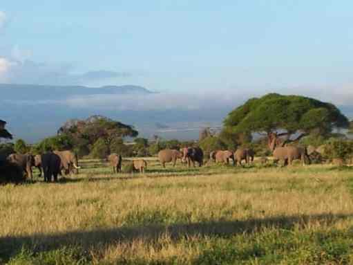 kenia-afrika-reise-bilder-007