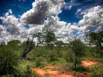 kenia-afrika-reise-bilder-064