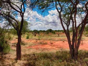 kenia-afrika-reise-bilder-077