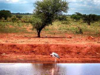 kenia-afrika-reise-bilder-119